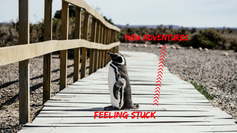 feeling stuck new adventures