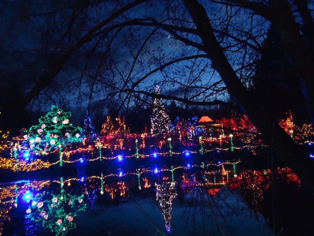 Van Dusen festival of lights winter in vancouver botanical gardens ikigai travel