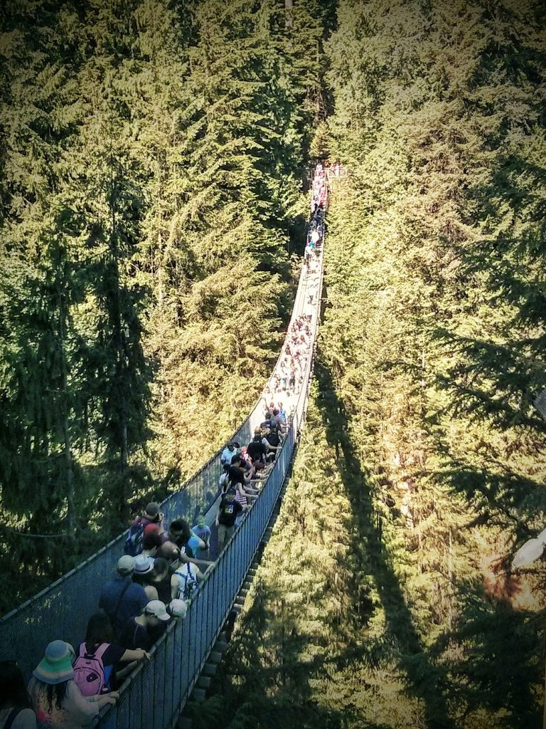 Capilano Suspension Bridge Vancouver tour Ikigai Travel