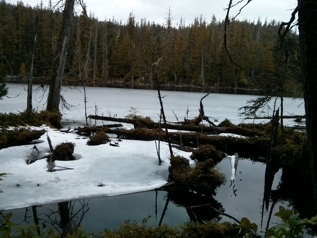 a travel guide to Haida Gwaii spirit lake skidegate british columbia canada ikigai travel