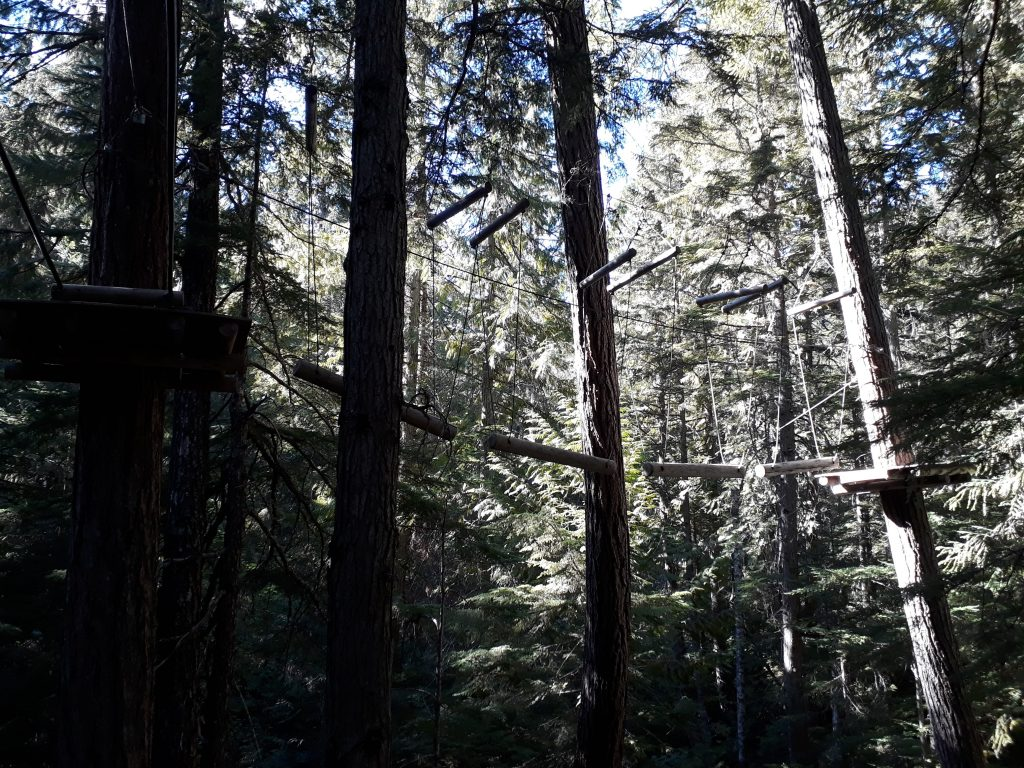 treetop adventure whistler why you should visit Vancouver in summer ikigai travel