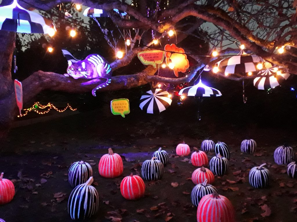 alice cheshire cat alice in wonderland glow lights pumpkin halloween fall in vancouver ikigai travel