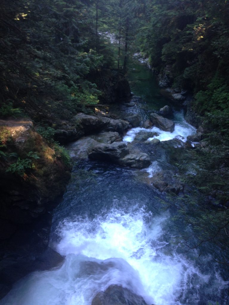 Falls at Lynn Canyon North Vancouver tour Ikigai Travel
