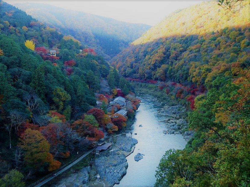 kyoto like a local arashiyama momiji ikigai travel