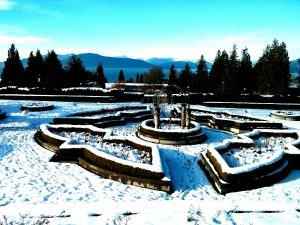 vancouver in winter rose garden snow ikigai travel