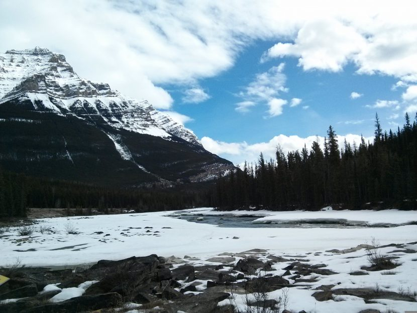jasper in a day mountains rockies alberta canada ikigai travel