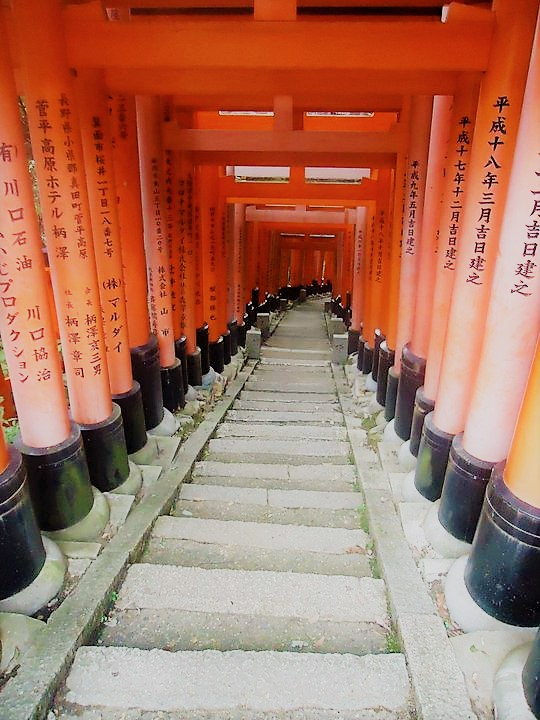 first time visitor guide to japan fushimi inari taisha kyoto ikigai travel
