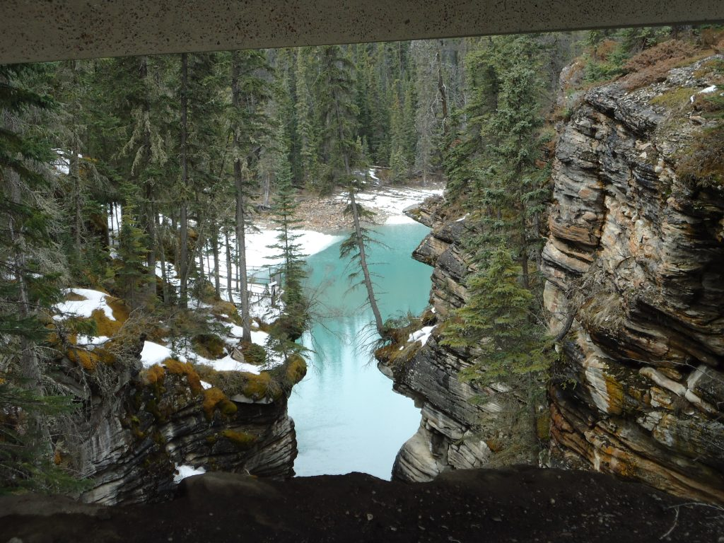 athabasca falls jasper in a day icefield parkway alberta canada ikigai travel