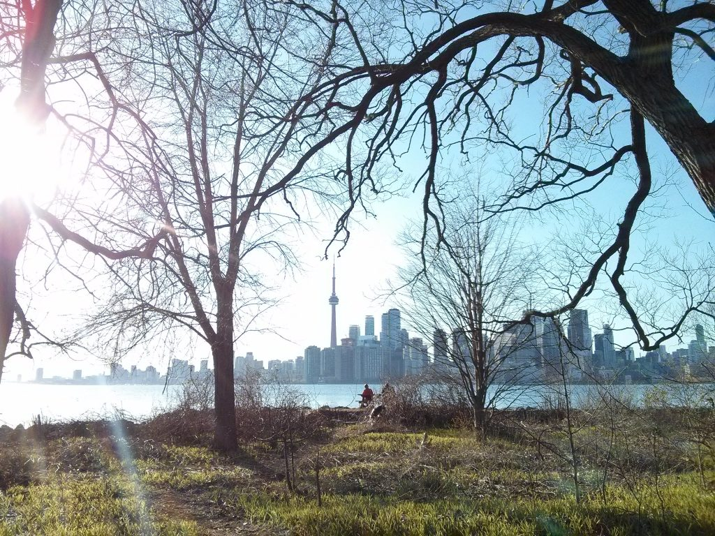 sightseeing in toronto toronto islands skyline ontario canada ikigai travel