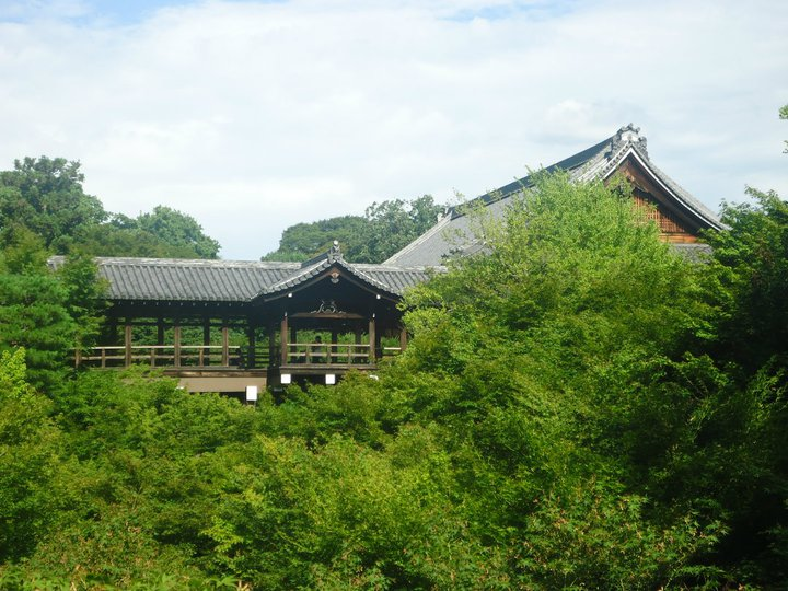 Kyoto: a guide to temples and shrines tofukuji ikigai travel