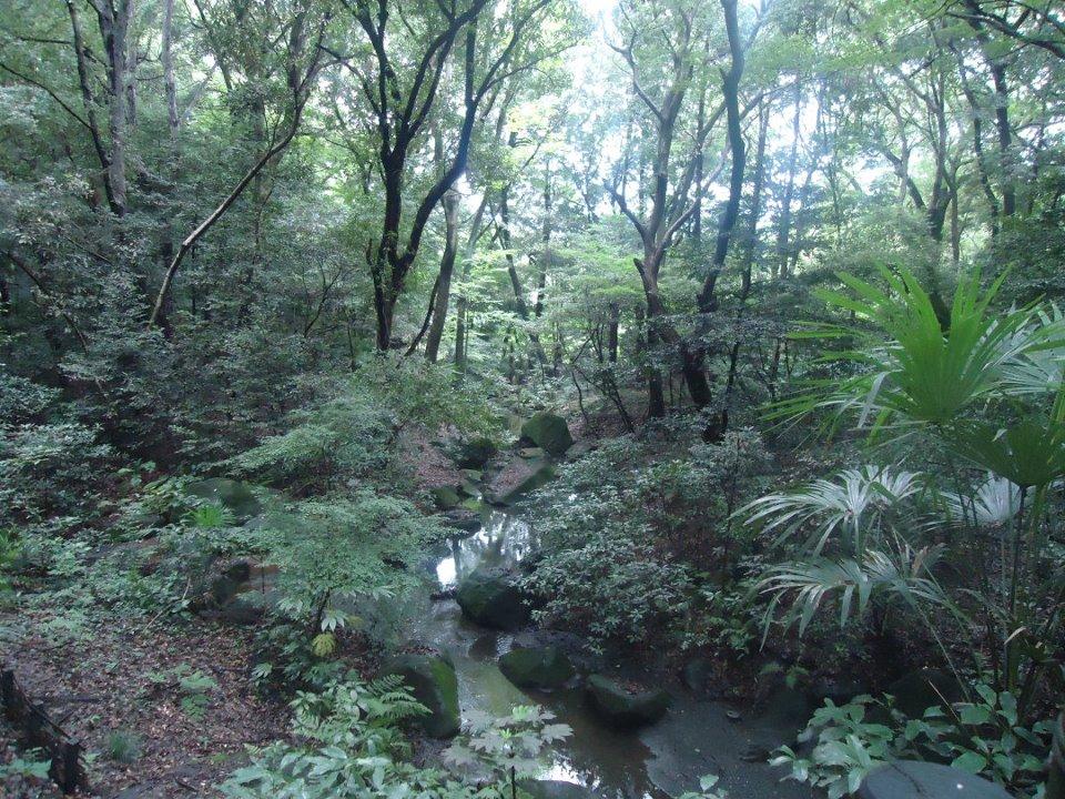 Tokyo in 2 days along the Yamanote Line meiji jingu tokyo japan travel ikigai travel