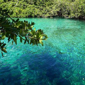 casa cenote tulum top cenotes in mexico ikigai travel